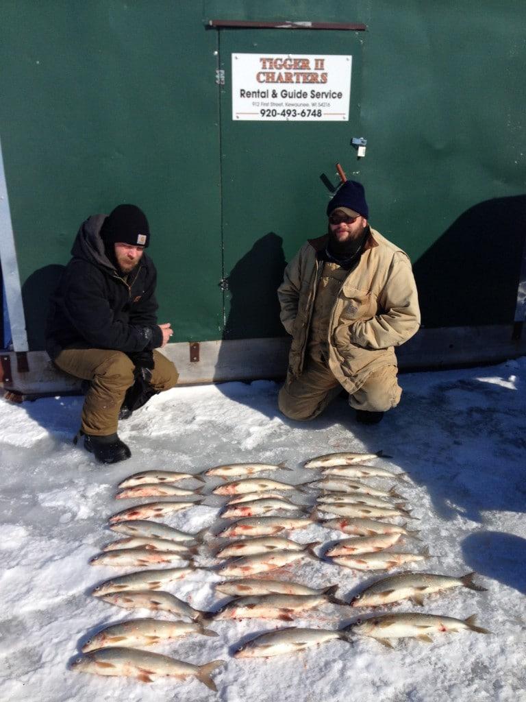 hot whitefish action ice fishing