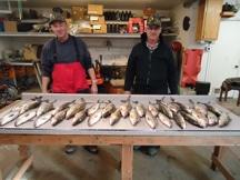 Ice Fishing Kewaunee WI